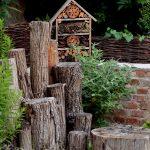 zahrada15